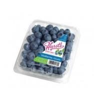 Blueberry 170g